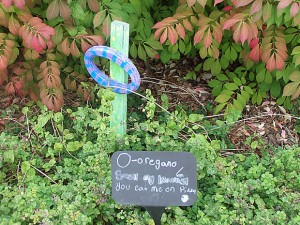 """""""We have several chalkboard notes near the ABC plants to invite children, parents, teachers and visitors to a new plant or a new fact about a plant,"""" said garden coordinator Sandy Paratore."""