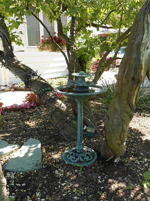 Cathy Connelly: Use non-plant material for color and interest: Statuary, garden flags, rocks, whimsical yard art, even attractive old birdbaths or bird feeders that you give yourself permission not to fill.