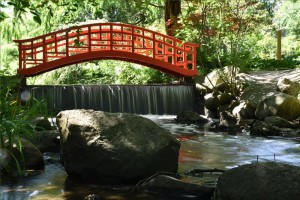 Cranbrook Japanese garden. (Photo: Eric Franchy)
