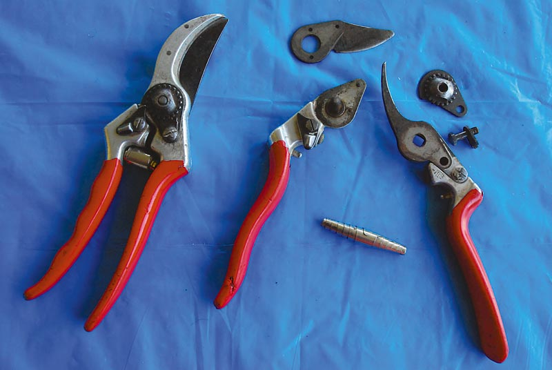 How to Sharpen Hand Pruners Michigan Gardener