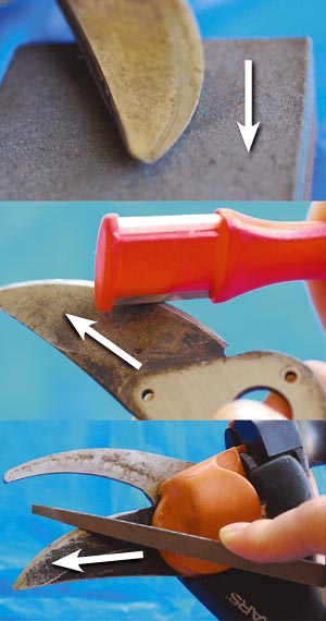 Regardless of the tool, always move in one direction: from the base of the blade toward the tip. Remember to keep the tool at the correct sharpening angle along the beveled edge.