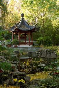 The Chinese garden pavillion rests peacefully in the fall.