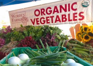 Results of a new study published this week in the British Journal of Nutrition adds to the evidence that organic production can boost key nutrients in foods. (Photo: USDA)