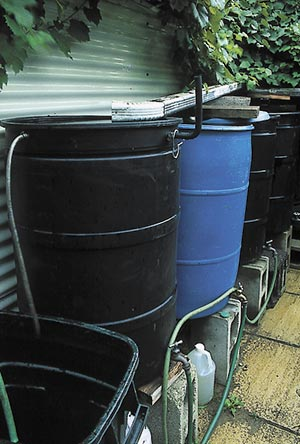 Rainwater can be collected for irrigation. Bergeron's downspouts fill rain barrels. The barrels are elevated on blocks so they can be tapped to supply the garden.
