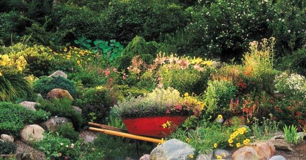 Water is the crux of gardening. For a beautiful garden, spend some time sorting out your plants' individual water needs and how water flows in your soil.